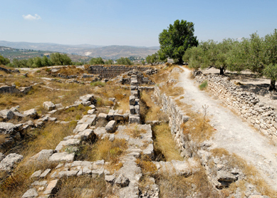 The Iron Age acropolis of Samaria.
