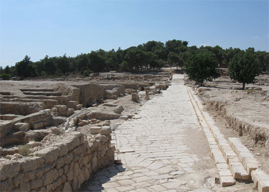 Village in Galilee - Sepphoris